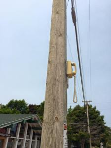 Telephone on Pole